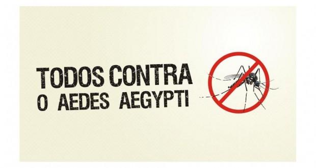 População deve tomar cuidados com o mosquito Aedes aegypti no verão